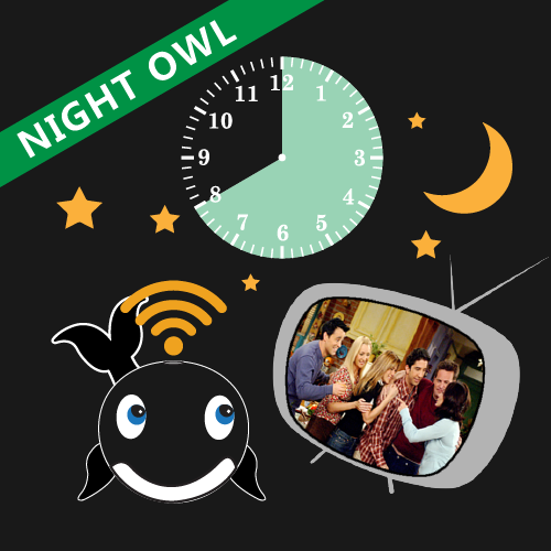 Work from home night owl